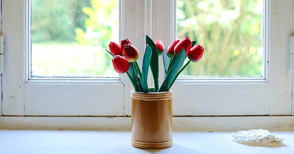 Osvedčené tipy, ako oživiť a presvetliť váš domov