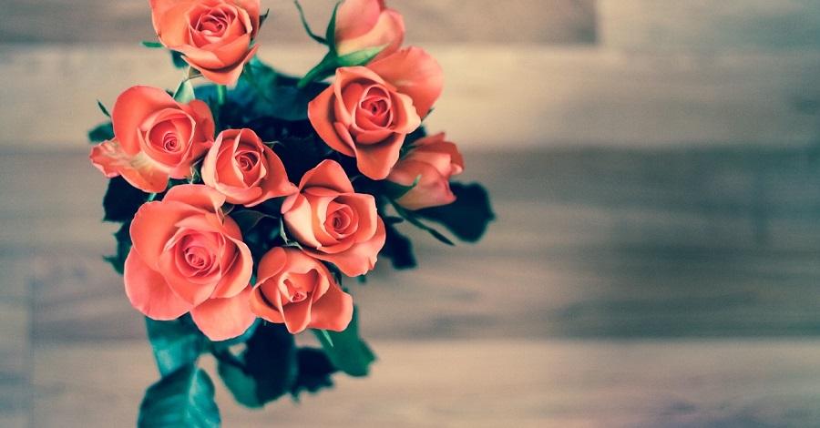 Ako sa starať o rezané kvety, aby vám vydržali čo najdlhšie?